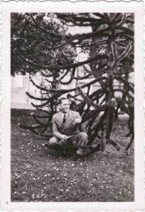 Bild: unbekannter Mann vor einer Araukarie